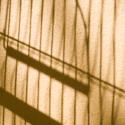 Tieň kanárika v klietke